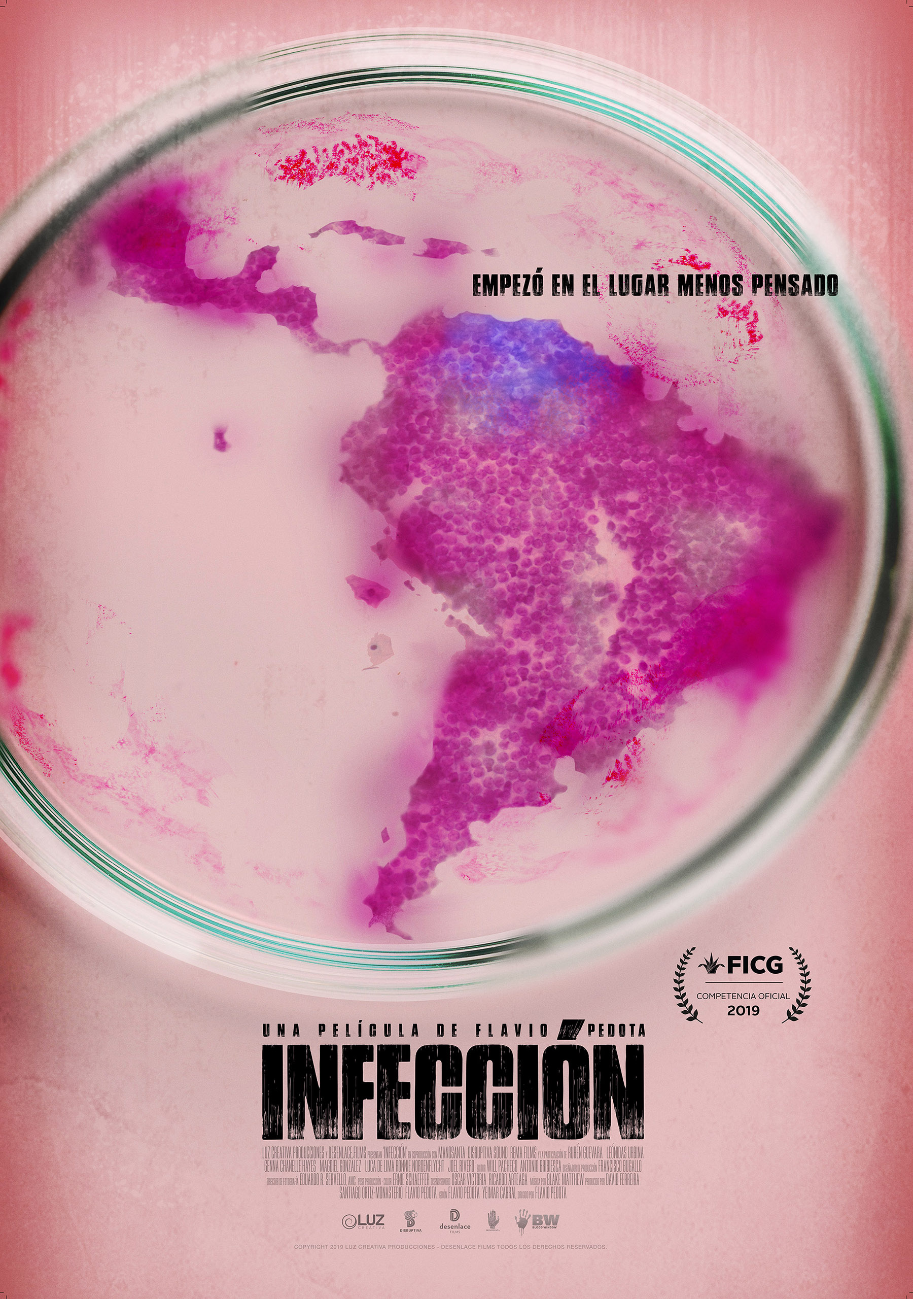 Infecção